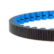 113 tooth cdx belt blue