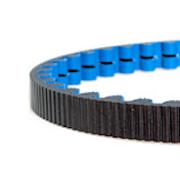 122 tooth cdx belt blue